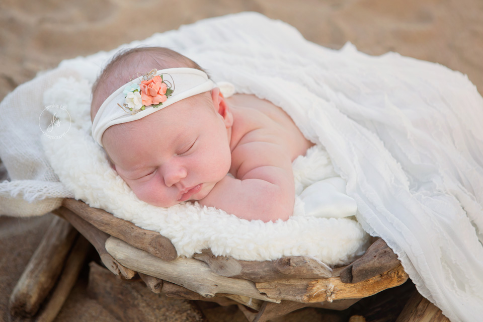 newborn baby girl in basket on the beach