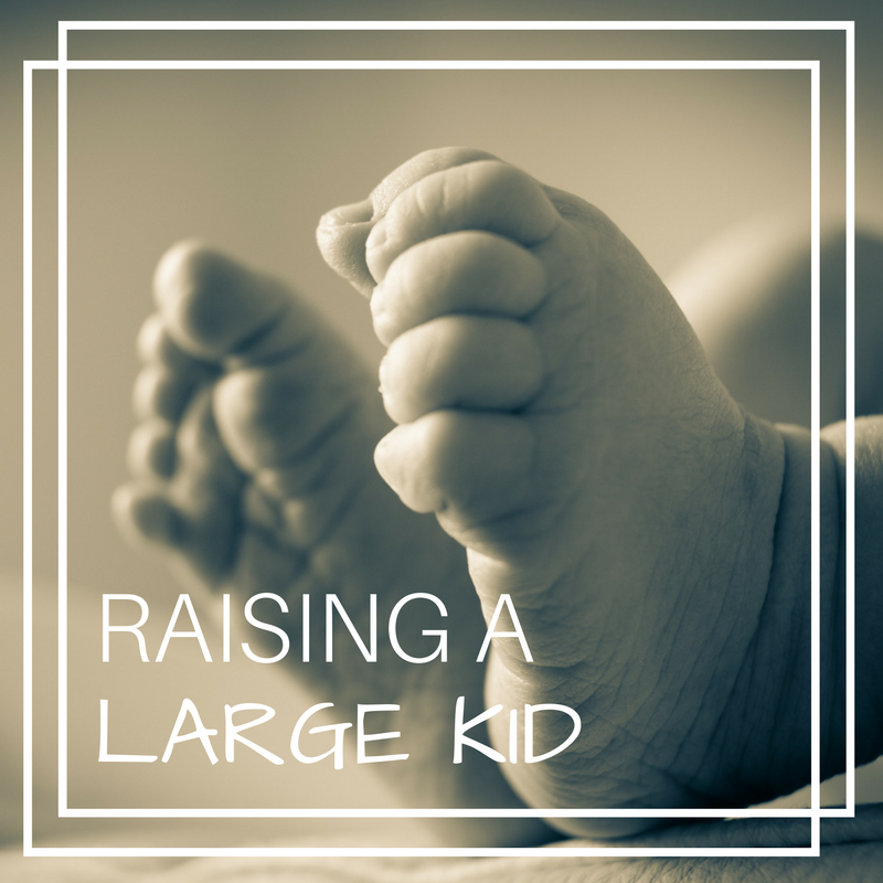 raising-a-large-kid