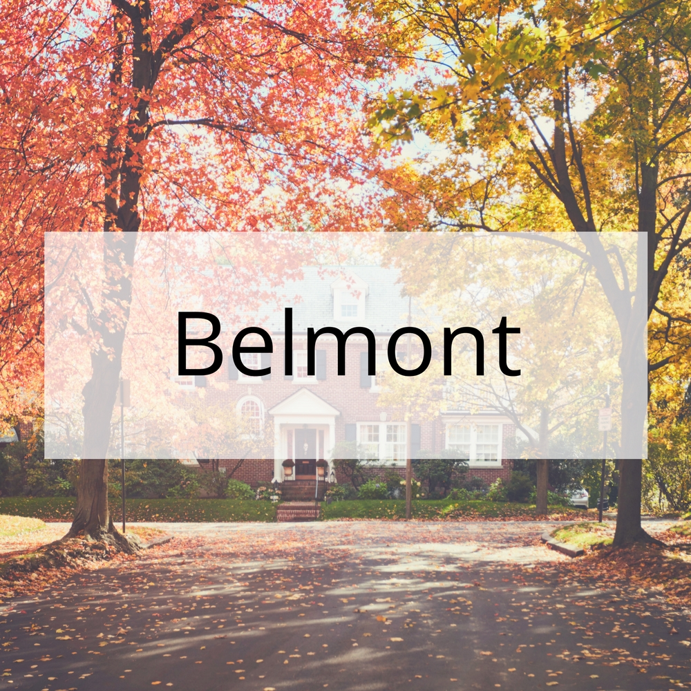 Walker Walters Real Estate Belmont Open Houses.jpg