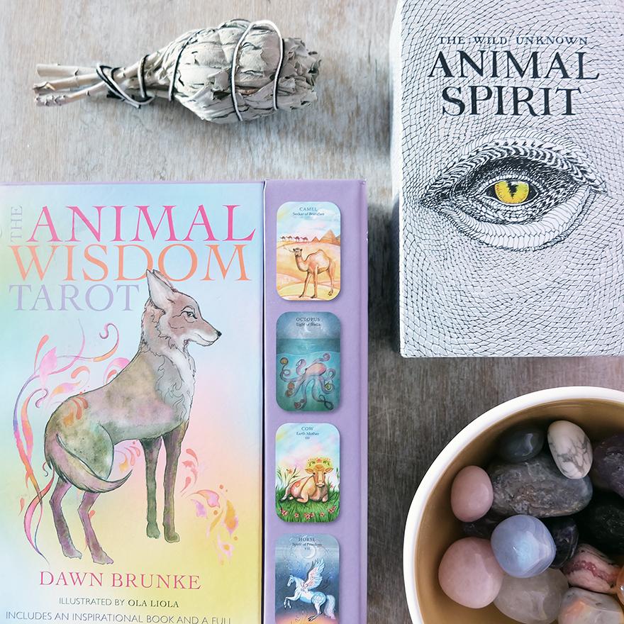 Decks used: Animal Wisdom Tarot (Dawn Brunke and Ola Liola, Cico Books) and The Wild Unknown Animal Spirit (Kim Trans, The Wild Unknown)