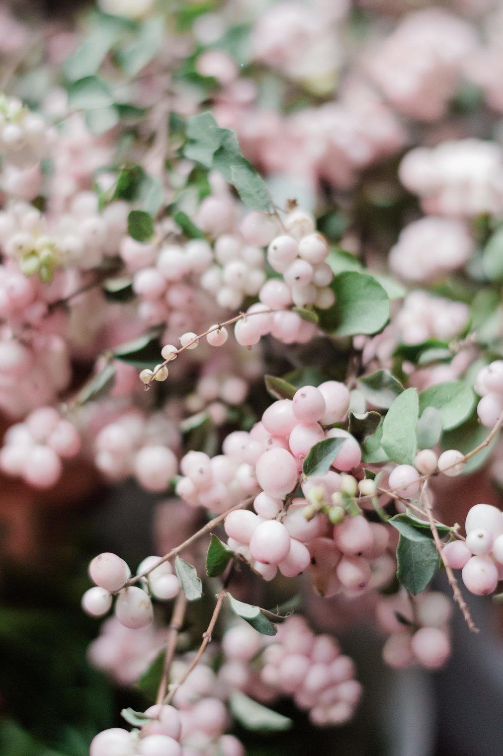 Kristen Honeycutt Photo Co.-049.jpg