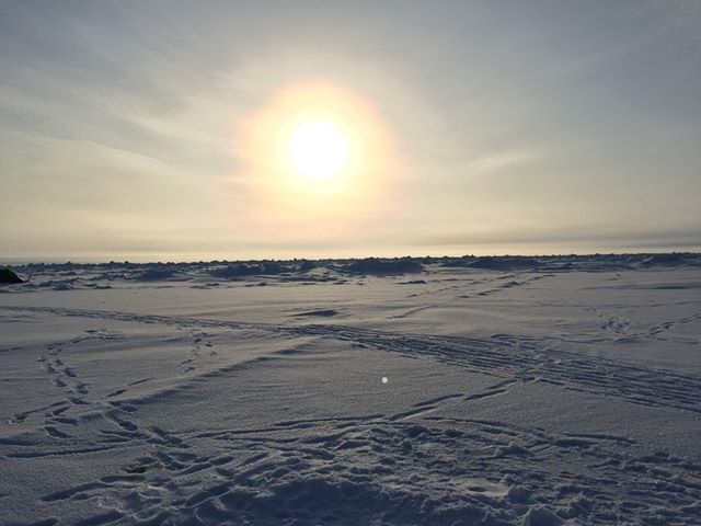 Arctic Wilderness. No filter #arctic #northpole #wilderness #nofilter #sun #snow #ice @kasperskylab powered by @engie #landscape #iphone #iphone6 #night #beautiful #nature