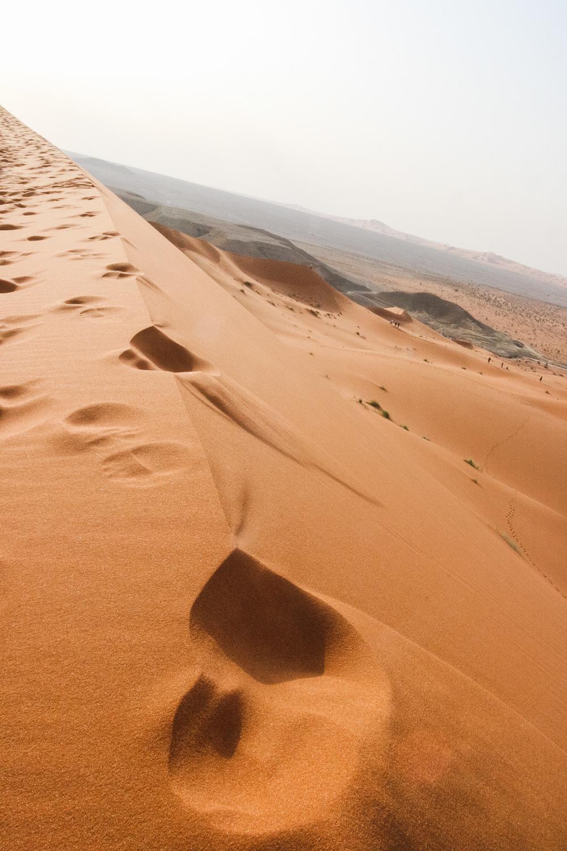 Red Desert (1).jpg