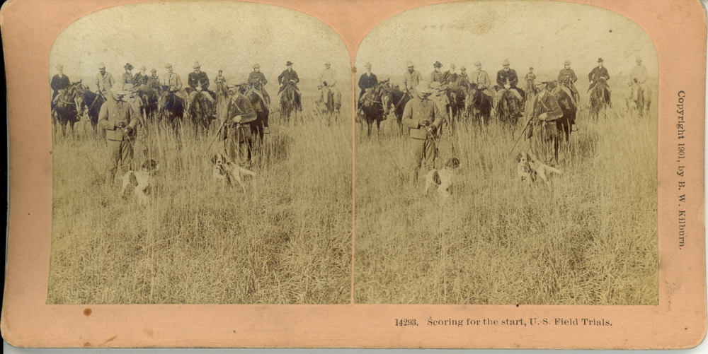 Stereograph from 1901 showing the start of a field trial in the US.