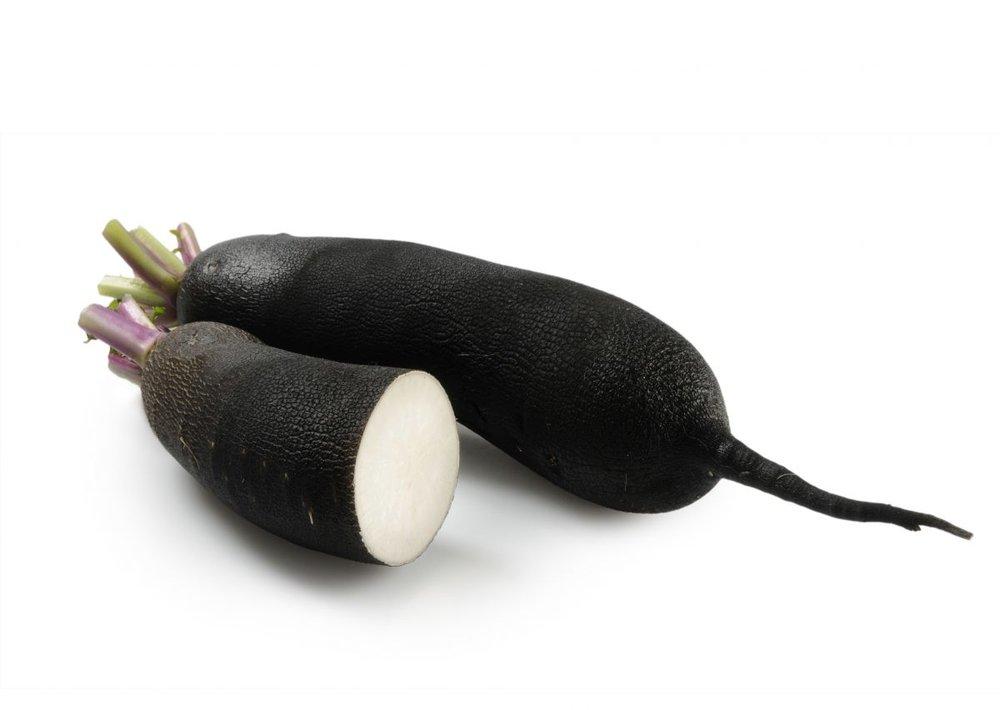ridiche neagra lunga