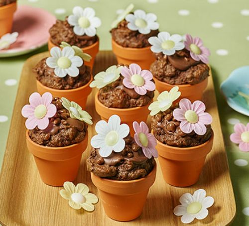 flowerpot-chocolate-chip-muffins.jpg