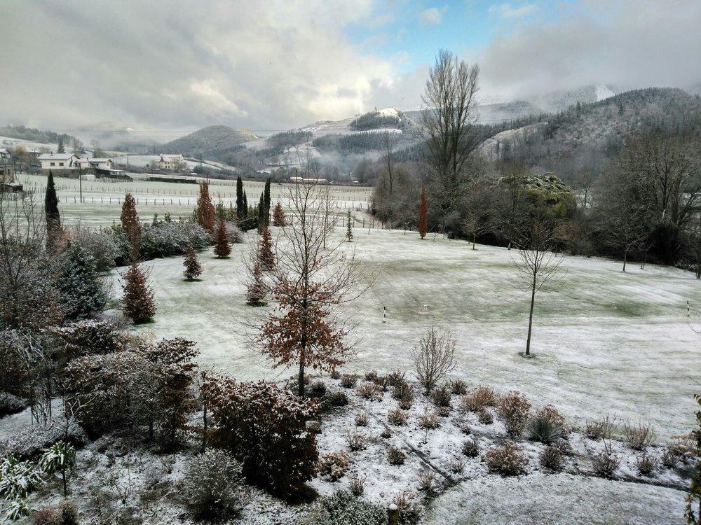 Gardens under the snow