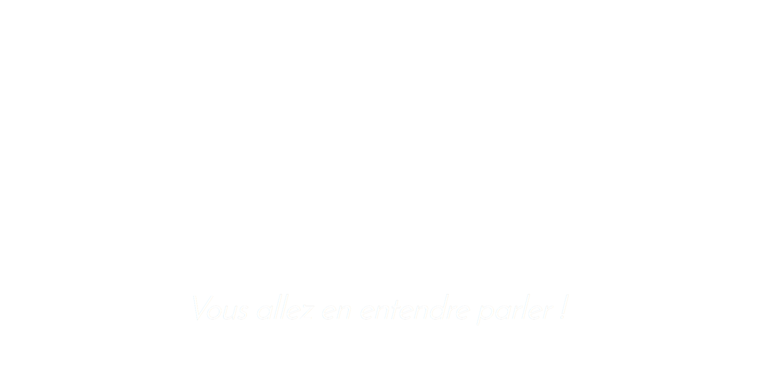 MAKE IT LOUD - Agence Webmarketing et Social Media