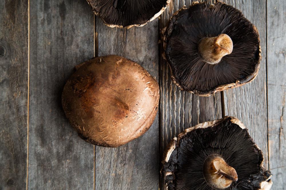 Portobello Mushrooms from East End Mushroom Company