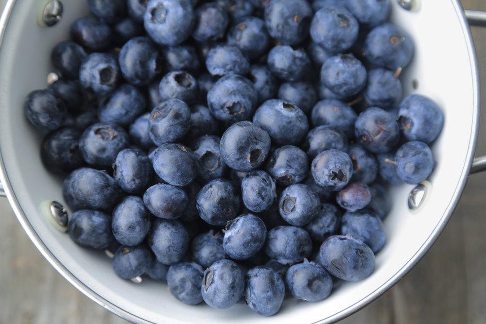 Blueberries_2LG.jpg