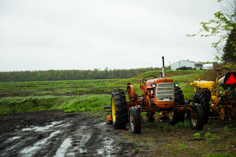 rogowski-farm-upstate-ny-02.jpg