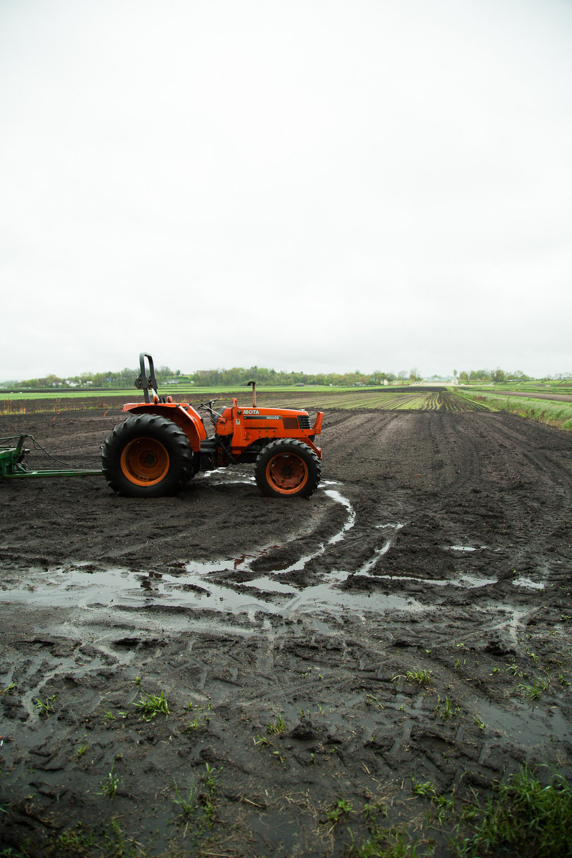 rogowski-farm-upstate-ny-01.jpg
