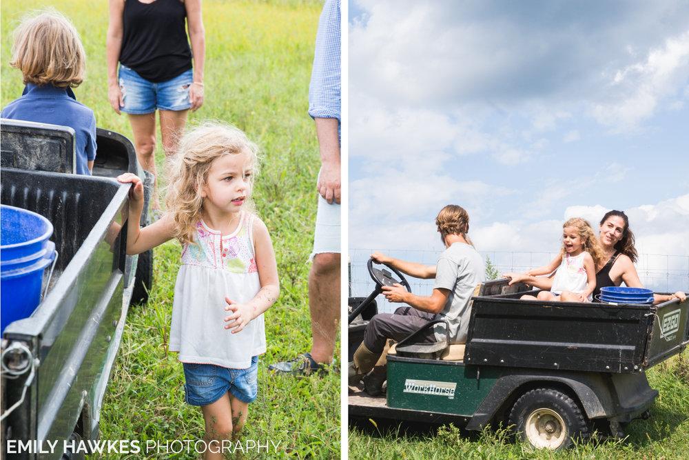 upstate-ny-roxbury-farm-039.jpg
