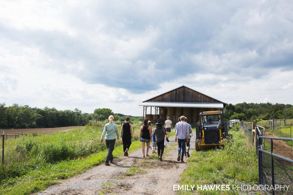 upstate-ny-roxbury-farm-033.jpg