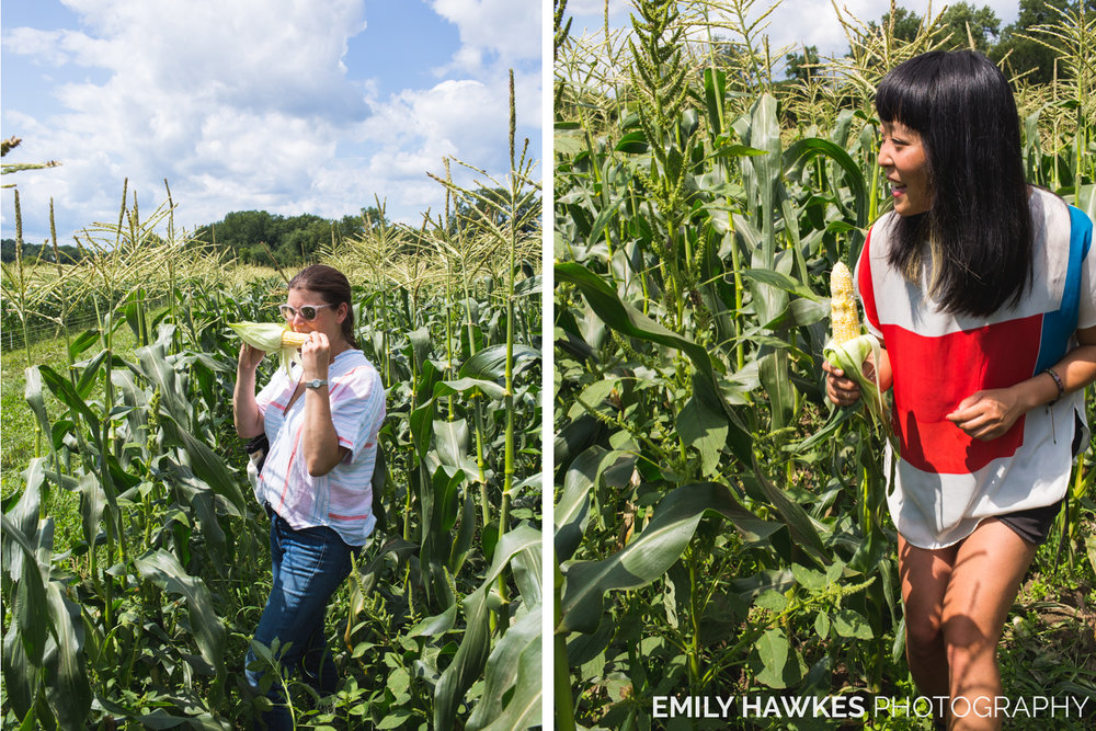 upstate-ny-roxbury-farm-019.jpg