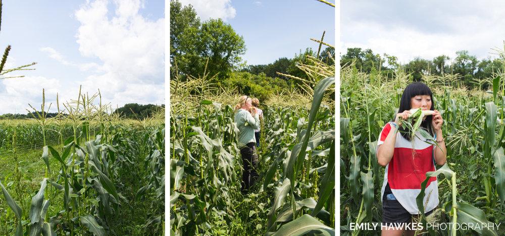 upstate-ny-roxbury-farm-018.jpg