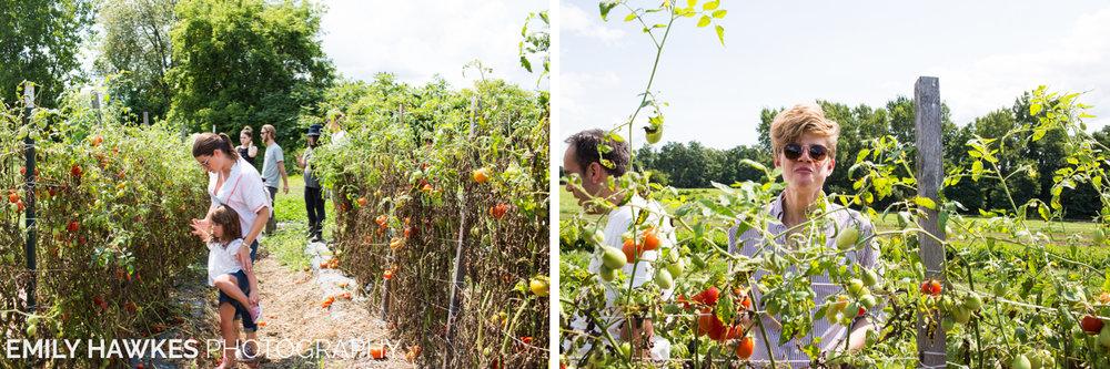 upstate-ny-roxbury-farm-012.jpg