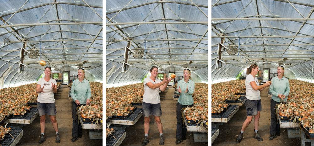 upstate-ny-roxbury-farm-008.jpg