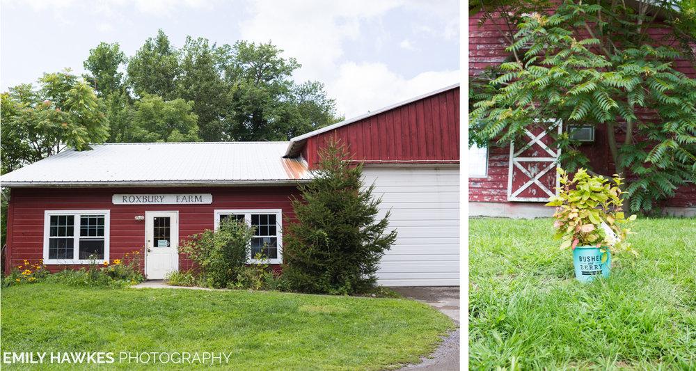 upstate-ny-roxbury-farm-002.jpg