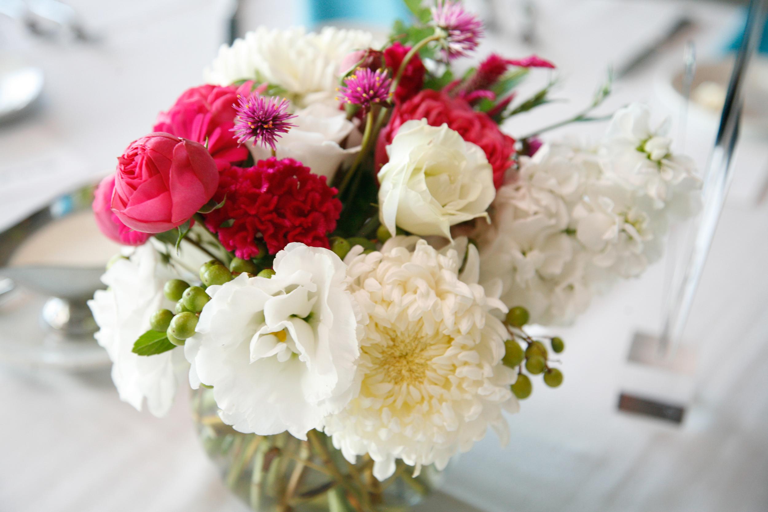 Contact — White Walnut Flower Farm