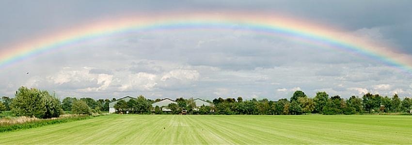 Circle-Rainbow.jpg