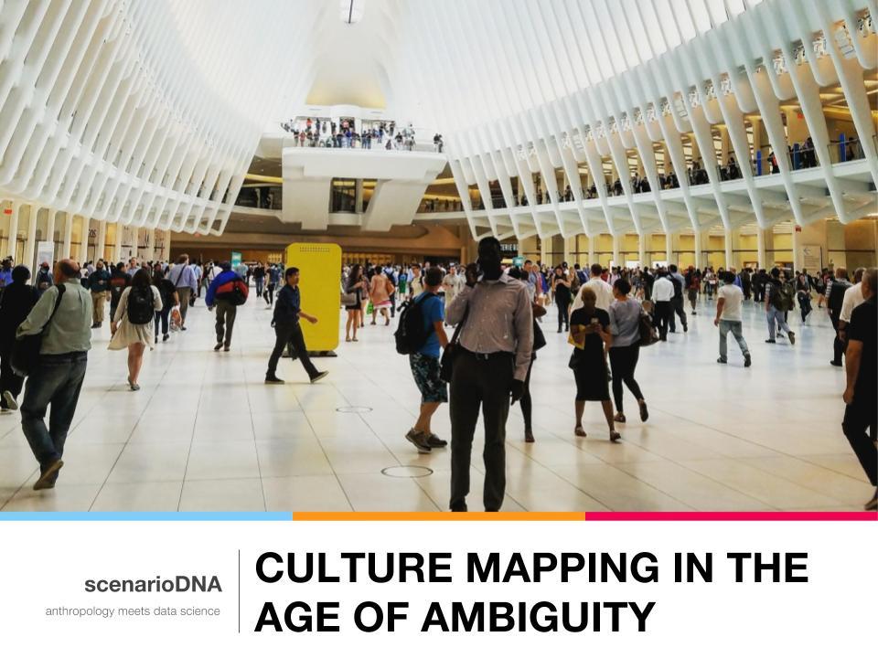 CultureMapping_ageofambiguity.jpg