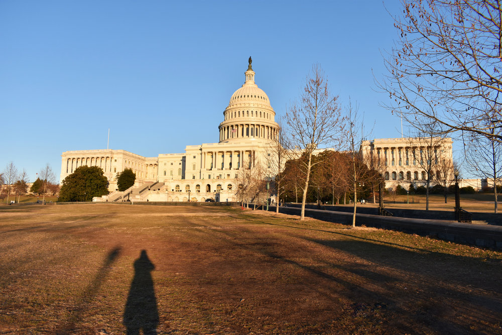 The U.S. Capitol in Washington is pictured from the West Lawn, Thursday, Jan. 25, 2018. (Lindsey Leake/American University)