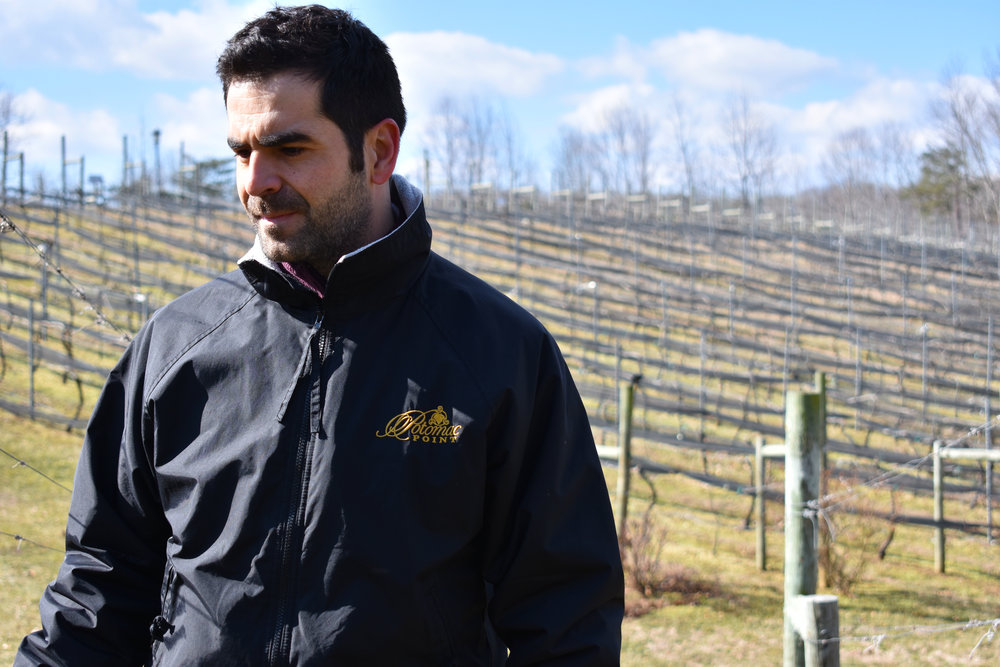 David Pagan Castaño, head winemaker at Potomac Point Vineyard and Winery in Stafford, Va., examines grapevines that need pruning, Friday, Feb. 2, 2018. (Lindsey Leake/American University)