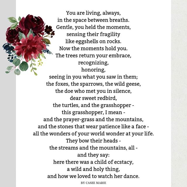 For Mary Oliver. I'm still reeling from the news of her passing, but I knew I wanted to at least try to put my remembrance of her into a poem. . . . . . . . #poetry #poetsociety  #writersofig #poetsofig #herheartpoetry #poetrycommunity #amwriting #poetsofinstagram #writersofinstagram #bigmagic