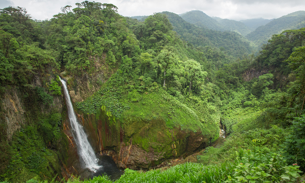 Costa-Rica-Jungle-Waterfall.jpg
