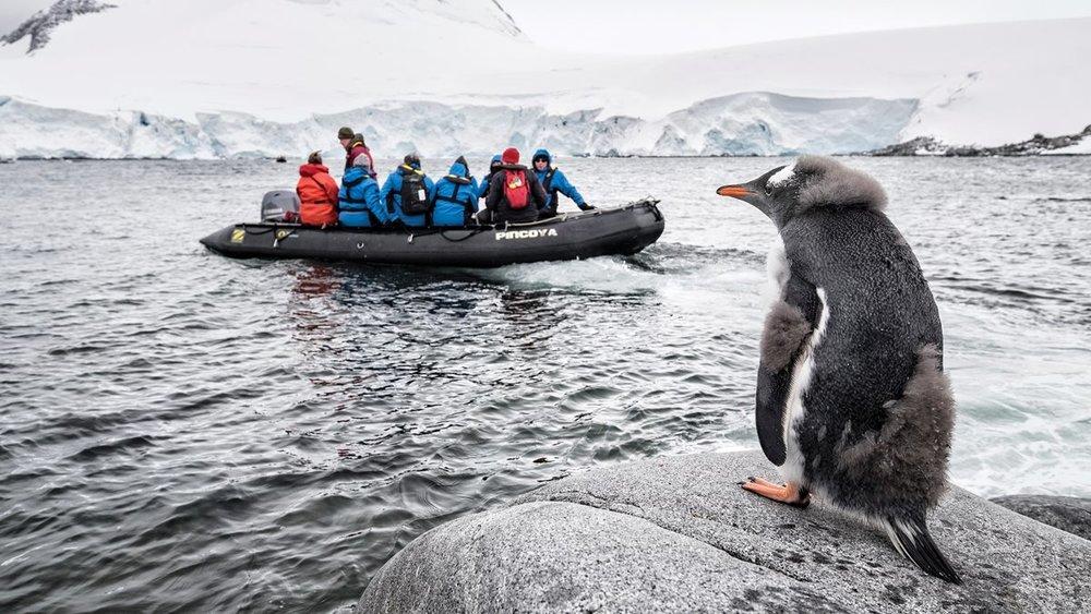 A bird's-eye view of Antarctica.
