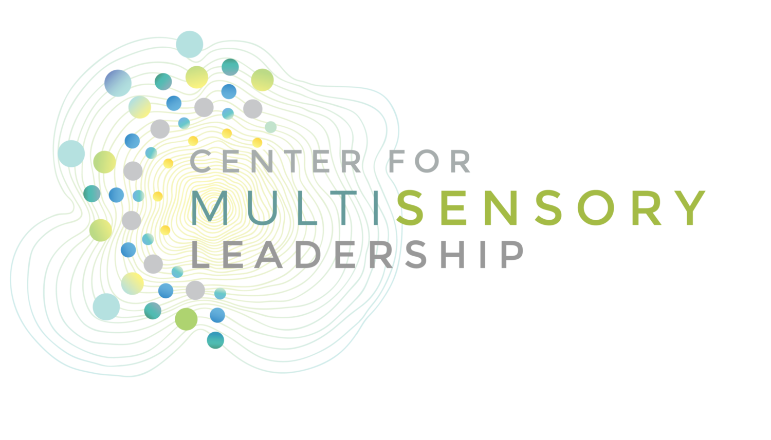 CENTER FOR MULTISENSORY LEADERSHIP