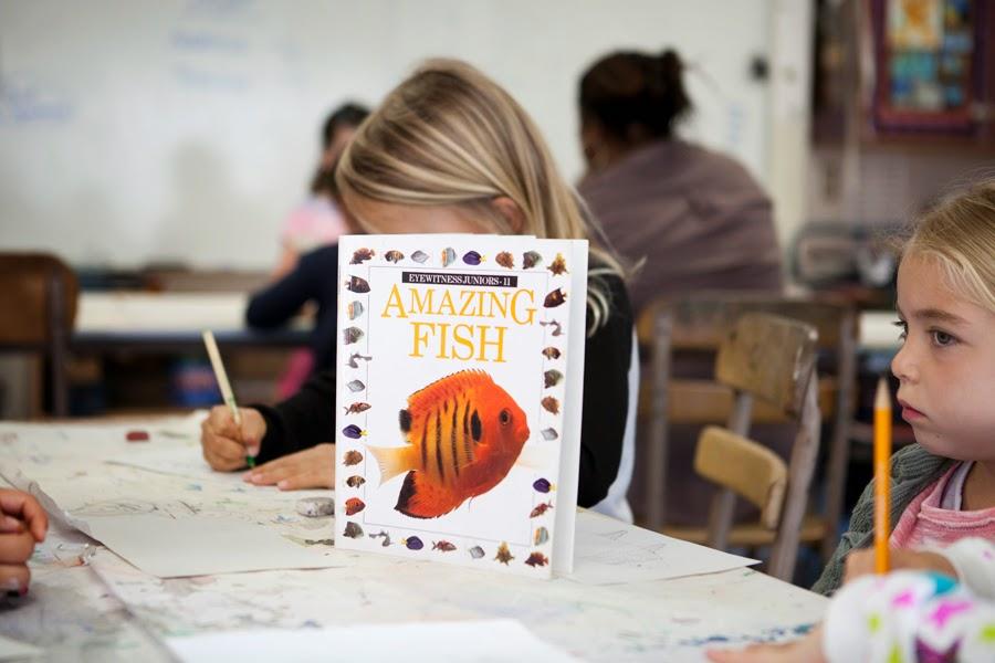 nbamazingfish.jpg
