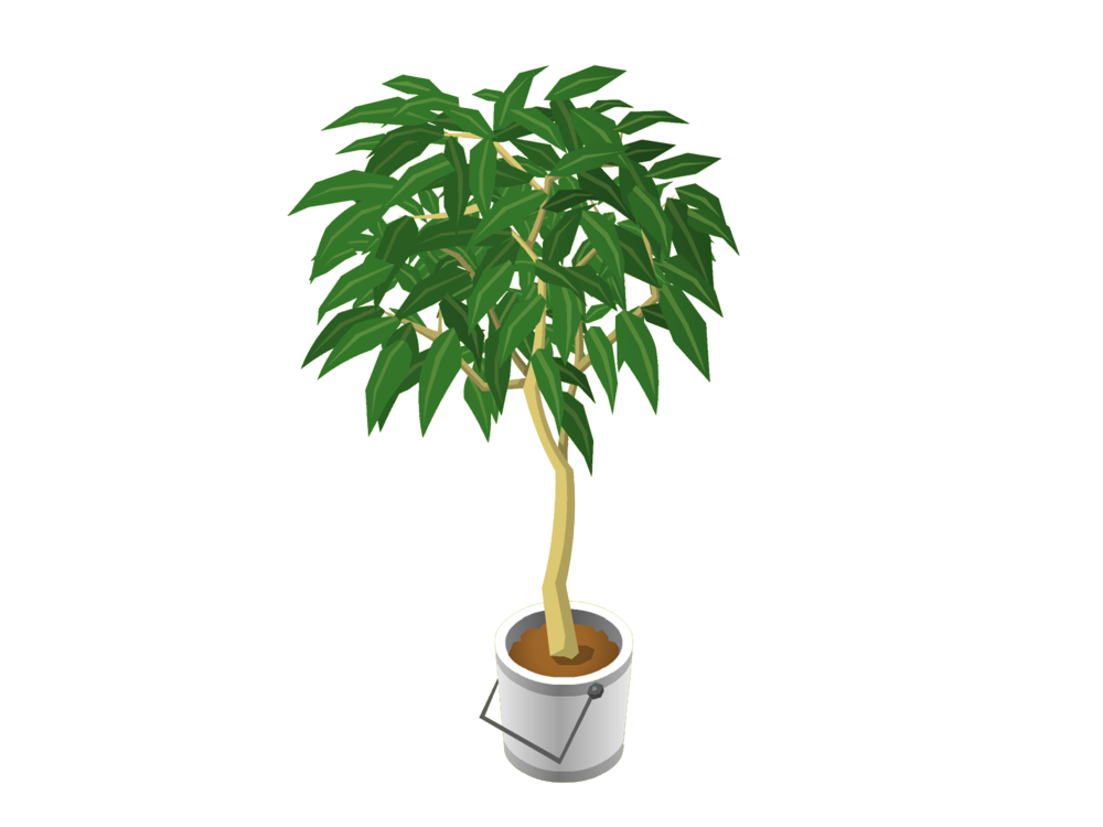Tree in Can.png
