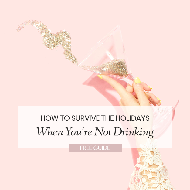 Survie the Holidays Guide Cover.png