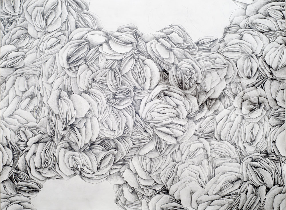 "100x Hematite  water-soluble graphite pencil on paper, 22"" x 30""   2014"