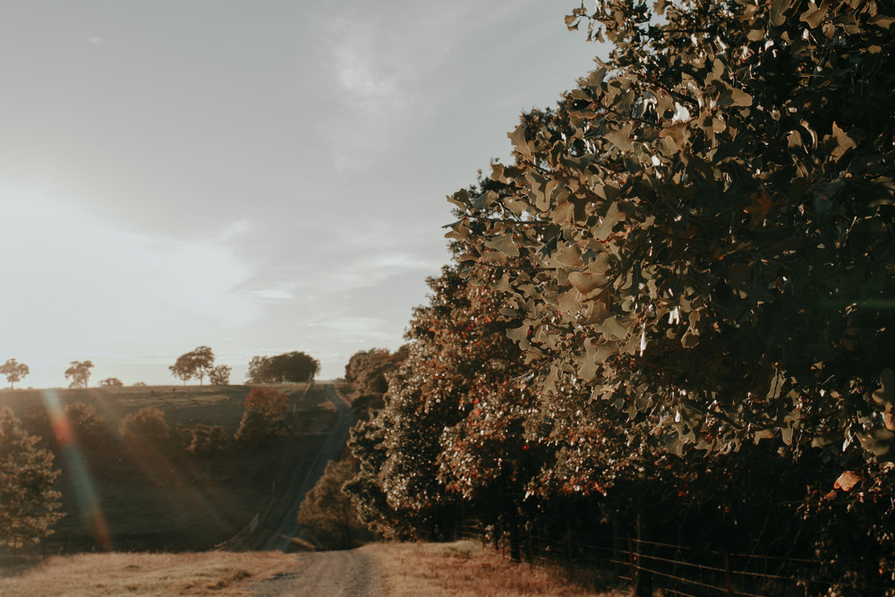 Montgomery Hill - PARTNERED VENUE