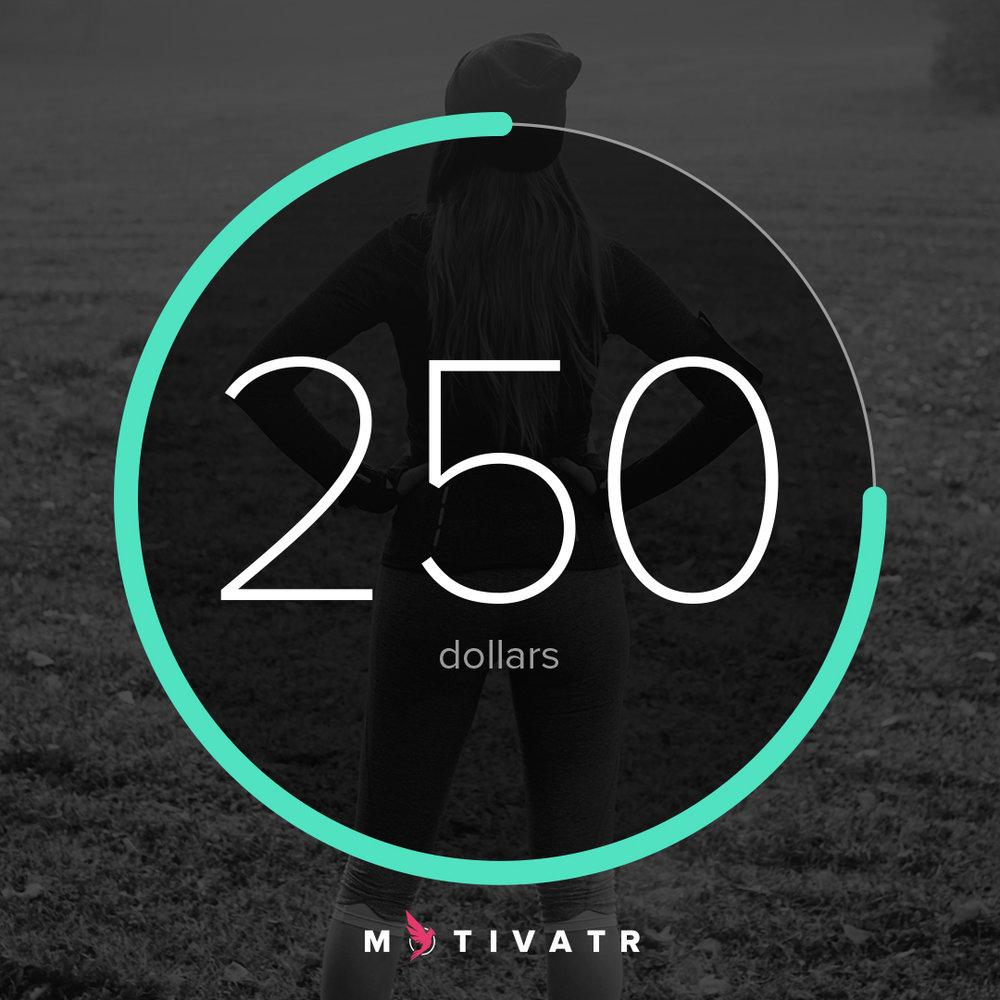 Motivatr-Square-dollars-250-2.jpg