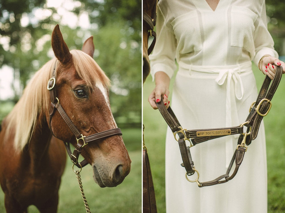 Seriously_Sabrina_Photographer_Lexington_Kentucky_Farm_Engagement_CB5.jpg