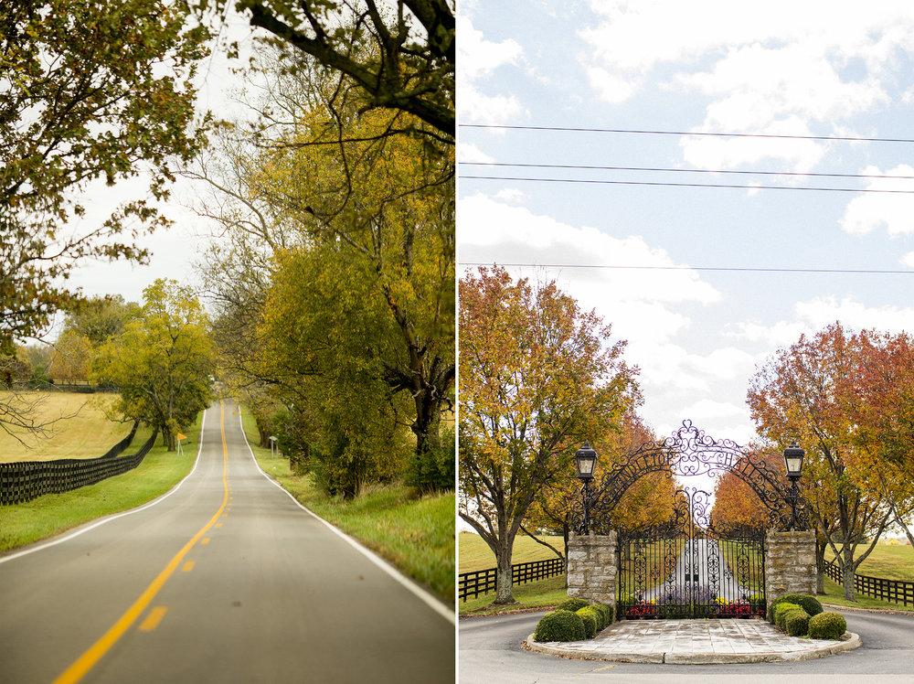 Seriously_Sabrina_Photography_Lexington_Kentucky_Wedding_Photographer_Boone402.jpg