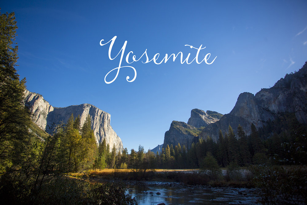 Seriously_Sabrina_Photography_Ky_Ca_Yosemite_Proposal_Engagement_209.jpg