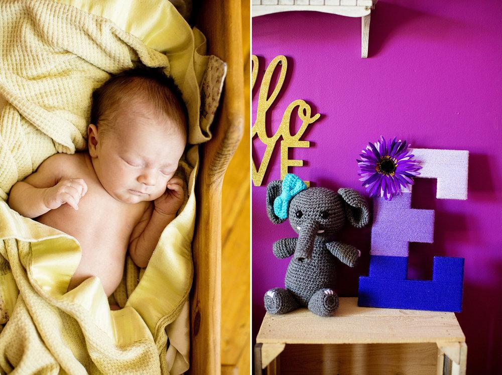 Seriously_Sabrina_Photography_Indiana_Newborn_Photographer_E_Vangosen012.jpg