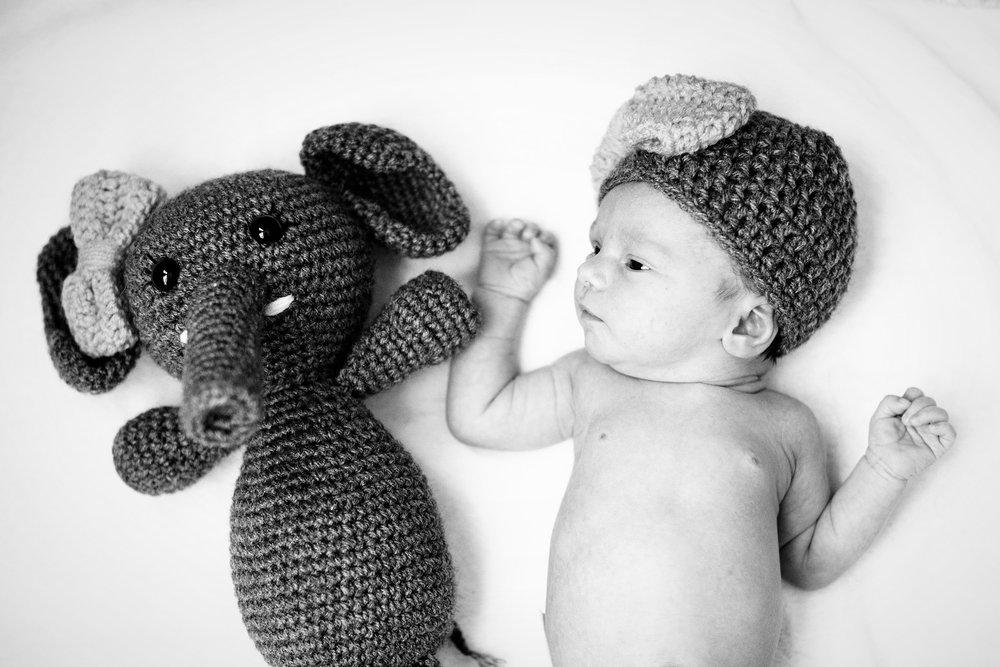 Seriously_Sabrina_Photography_Indiana_Newborn_Photographer_E_Vangosen028.jpg