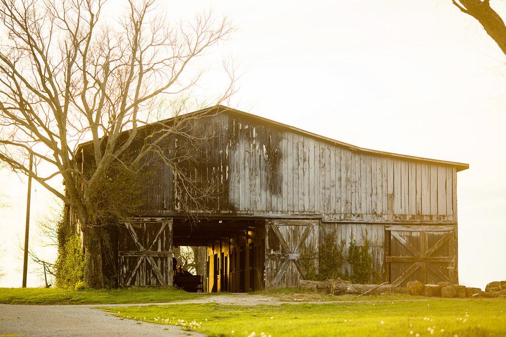 Seriously_Sabrina_Photography_Lexington_Kentucky_Keeneland_Sunset_Engagement_DomPeter27.jpg