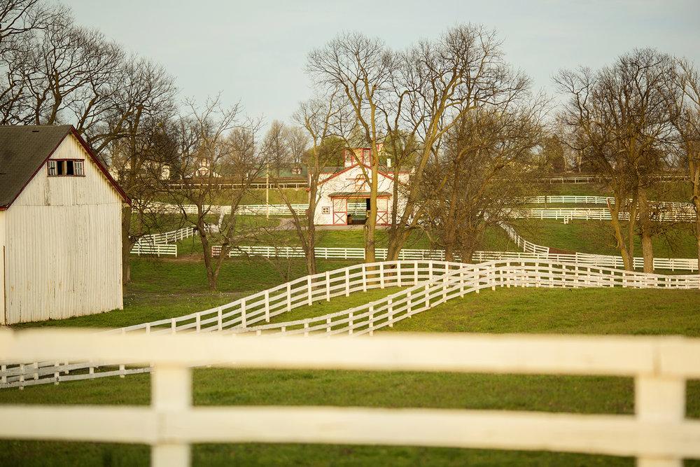 Seriously_Sabrina_Photography_Lexington_Kentucky_Keeneland_Sunset_Engagement_DomPeter26.jpg