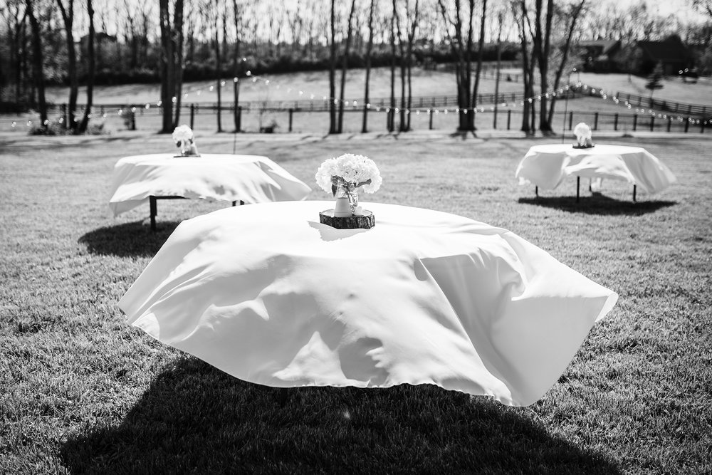Seriously_Sabrina_Photography_Georgetown_Lexington_Kentucky_Outdoor_Backyard_Wedding_Dillon28.jpg