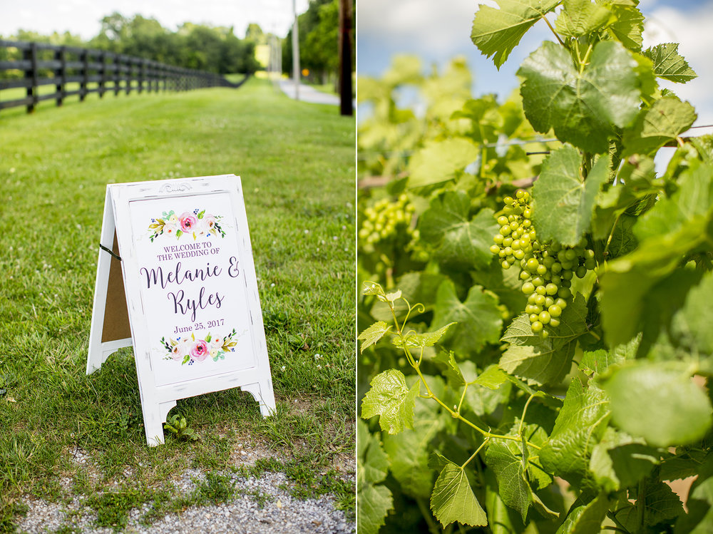 Seriously_Sabrina_Photography_Lexington_Kentucky_Talon_Winery_Wedding_Kjellsen2.jpg
