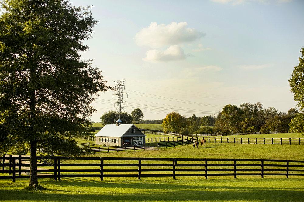 Seriously_Sabrina_Photography_Lexington_Kentucky_Family_Photographer_Seven_Acre_Farm_JimmieKristyn7.jpg