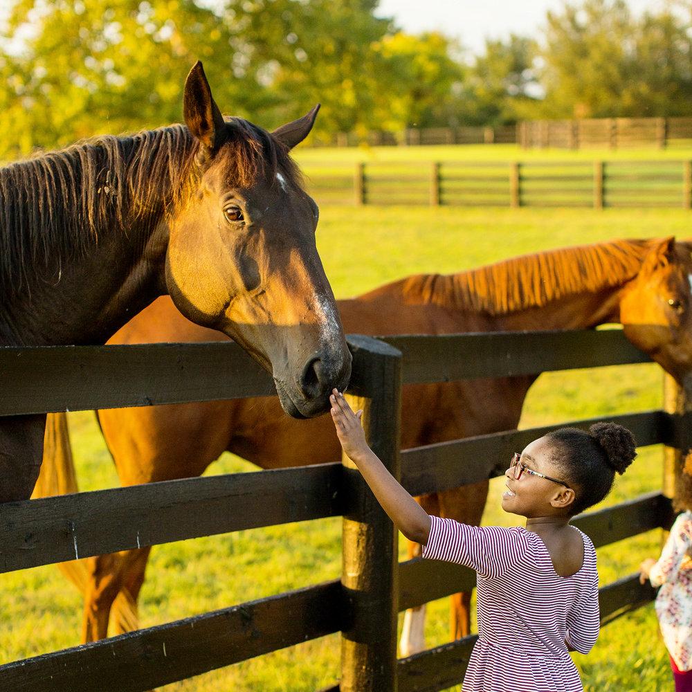Seriously_Sabrina_Photography_Lexington_Kentucky_Family_Photographer_Seven_Acre_Farm_JimmieKristyn12.jpg