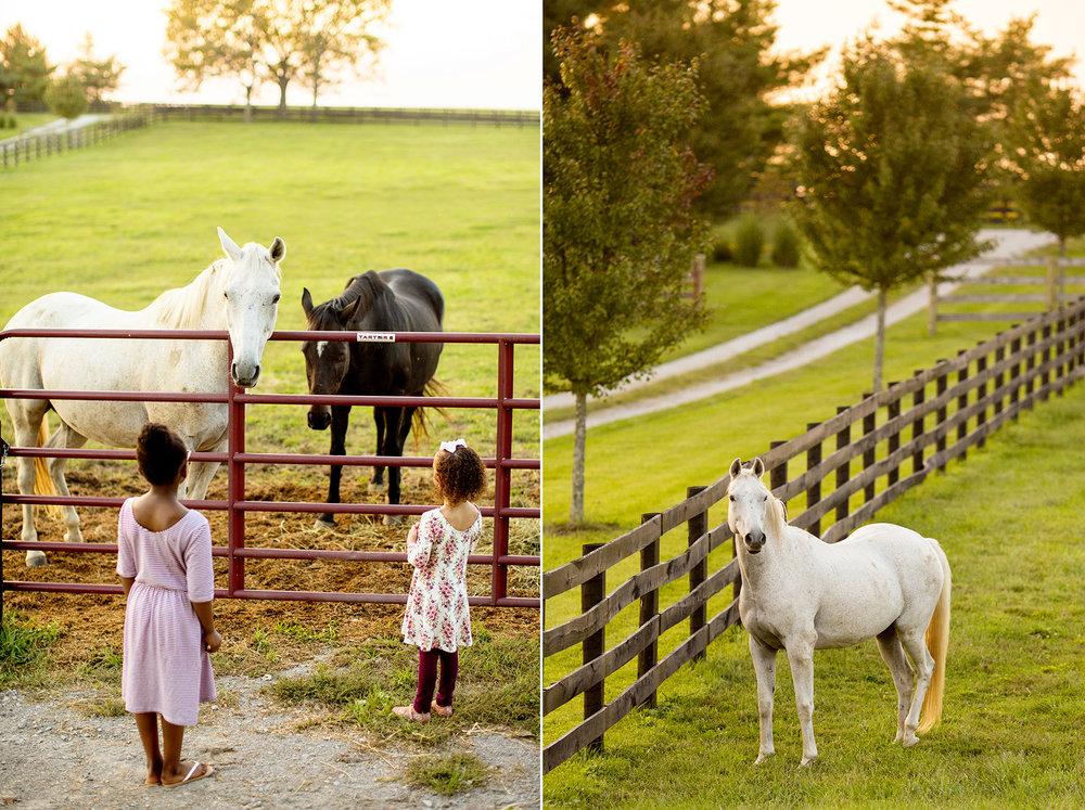 Seriously_Sabrina_Photography_Lexington_Kentucky_Family_Photographer_Seven_Acre_Farm_JimmieKristyn16.jpg